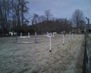 Natural Horse Boarding | On Course Equestrian Services