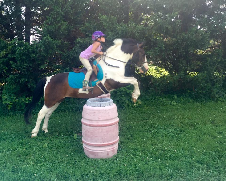 Horse Camp | On Course Equestrian Services