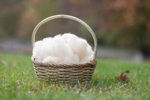 harford county wool and yarn